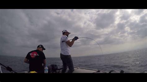 grouper elan reel catching