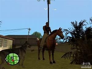 Animals in GTA San Andreas 2.0 for GTA San Andreas