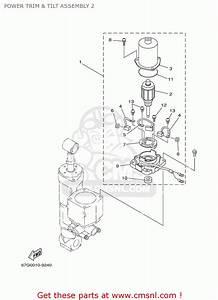 Yamaha F80  F100tlry 2000 Power Trim  U0026 Tilt Assembly 2