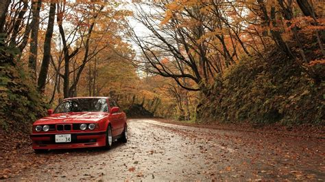 Trees, Forest, Cars, Roads, Red Cars, Alpina, Foliage, Bmw