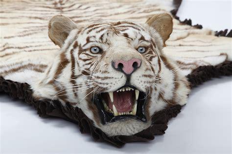Buy Carpet Samples by Tiger Rugs Cow Hides Zebra Rugs In Dubai Carpets Dubai