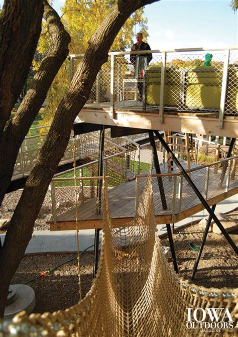 place    grown  treehouses dnr news releases