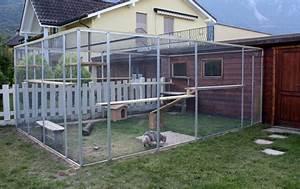 Maison Exterieur Pour Chat : une serre pour mes chats forum chats page 2 wamiz ~ Dailycaller-alerts.com Idées de Décoration
