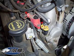 1997 Ford F150 4 6 Spark Plug Wiring Diagram