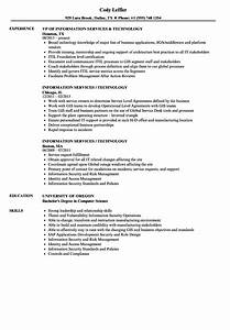 information services technology resume samples velvet jobs With information technology resume writing services