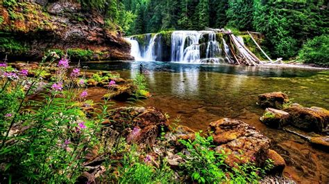 pond background waterfall pond wallpaper and background image 1366x768