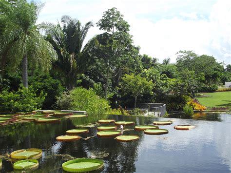 naples botanical gardens speechless sunday naples botanical gardens lake