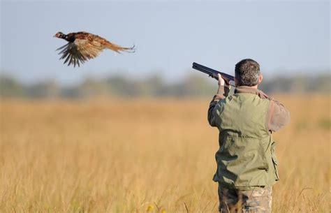 bureau à partager plaisance du touch une querelle pourrait tuer la chasse