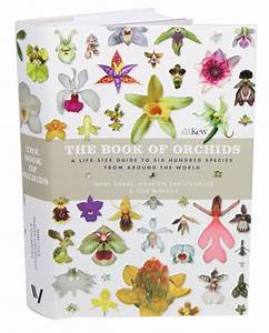 The Book Of Orchids  A Life-size Guide To Six Hundred Species From Around The World