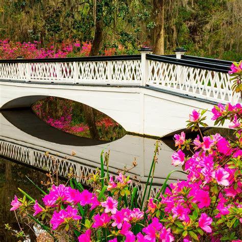 Charleston Home And Garden Tour 2017 charleston excursions magnolia gardens tour hurtigruten