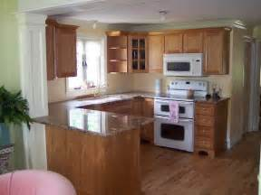 light kitchen paint colors with oak cabinets strengthening contemporary theme
