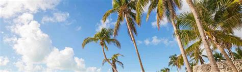 Hammocks Station Phone Number by Vrbo 174 Coral Hammock Key West Naval Station Vacation Rentals