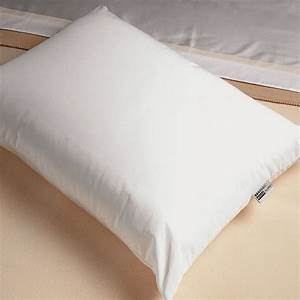 allergen proof pillows dreamfilltm missionallergy With allergy proof pillows