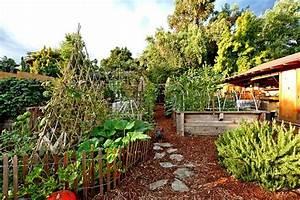 Organic Vegetable Garden Hooked On Houses