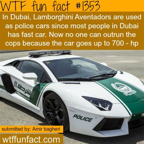 facts about scr autos post dubai lamborghini police cars more of fun