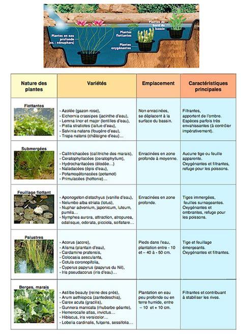 comment choisir une le dossier gt maintenir une eau de bassin limpide et