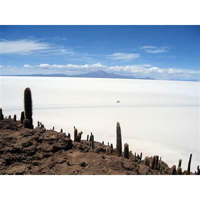 File:Isla de Pescado Bolivia Salar Uyuni 1.jpg