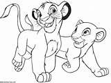 Coloring Pages Lions Lion Printable Animal Popular sketch template