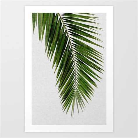 Remarkable palm tree coloring pages. Palm Leaf I Art Print by paperpixelprints | Society6