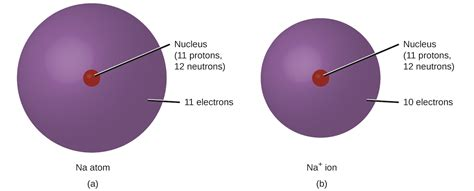 Sodium Of Protons by 3 4 An Atomic Level Perspective Of Elements And Compounds
