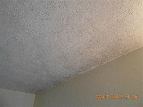 Mold/mildew On Ceiling In Bedroom