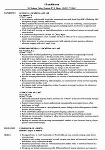 Inventory Resume Examples Allocation Analyst Resume Samples Velvet Jobs