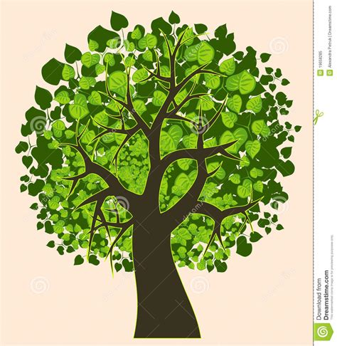 Illustration Of An Isolated Summer Tree Stock Vector  Image 19658285