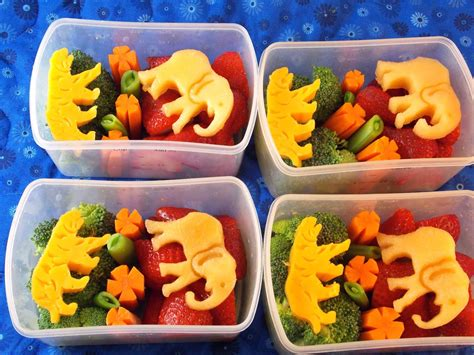 healthy snacks for a trip to the zoo beneficial bento