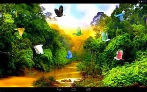 Forest River Live Wallpaper
