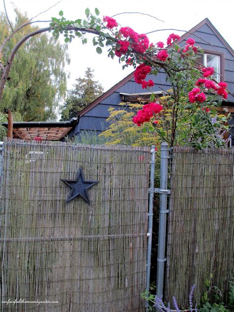 hometalk diy beautify  chain link fence  bamboo