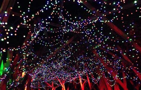 illumination light show coupon l a zoo lights discount tickets spectacular light show