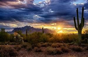 A Sonoran Desert Sunrise Photograph by Saija Lehtonen
