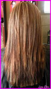 LAYERED HAIRCUTS FOR LONG STRAIGHT HAIR BACK VIEW