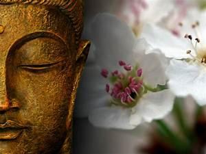 Espacio Zen So Hum: Somos lo que pensamos