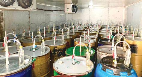 Anaerobic fermentation is not a new. Fermentation at Origin - Fresh Cup Magazine