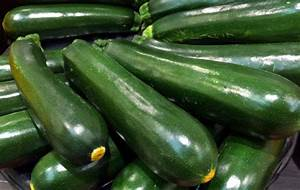 zucchini summer squash marrow simple indian recipes