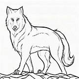 Wolf Coloring Pup Printable Colouring Peter Mom Drawing Kid Theme Cub Clyde Mother Popular Getdrawings Coloringhome sketch template