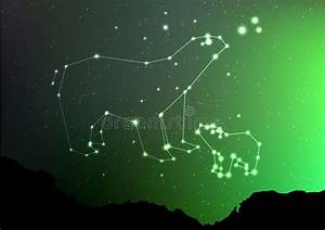 Constellations Of The Northern Hemisphere  Stock Vector