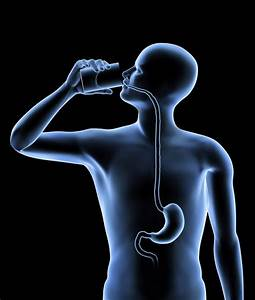 A Pa Review Of Disorders Of The Esophagus And The Stomach