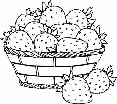 Basket Strawberries Coloring Strawberry Flip Coin Challenge