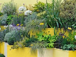 Container and Small-Space Gardening DIY