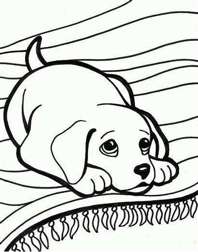Coloring Dog Pages Puppies Puppy Colouring Printable