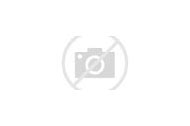 Special Olympics Bocce