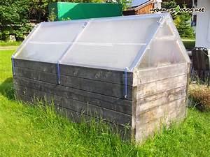 Tomaten Im Hochbeet : dach f r hochbeet bauen vom hochbeet zum mini gew chshaus dach selber bauen hochbeet mit dach ~ Whattoseeinmadrid.com Haus und Dekorationen