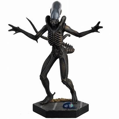 Alien Predator Eaglemoss Figurine Metal Youbentmywookie Collectibles