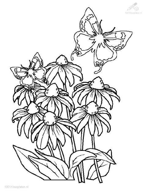 full page coloring pages getcoloringpagescom