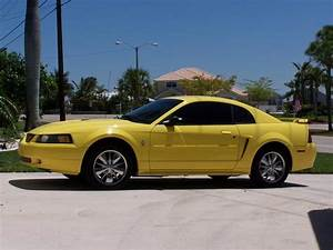 Iceman1102 2002 Ford Mustang Specs, Photos, Modification Info at CarDomain