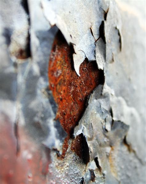 Can I Paint Over Rust?  Ag Williams Painting Company