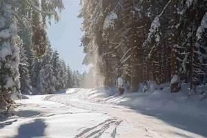 Sankt Andreasberg Rodelbahn : rodeln im harz die sch nsten rodelbahnen im oberharz ~ Buech-reservation.com Haus und Dekorationen