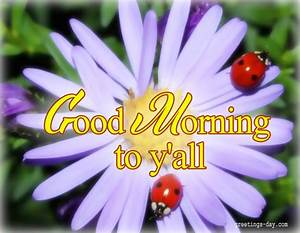 morning daily ecards photos and greetings